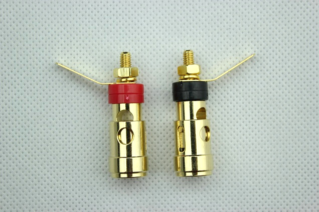 https://www.audiophonics.fr/images2/7995/7995_borniers_gold_1.jpg