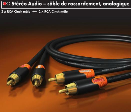 https://www.audiophonics.fr/images2/8725/8725_hicon_ergonomic_hie-c2c2_1.png