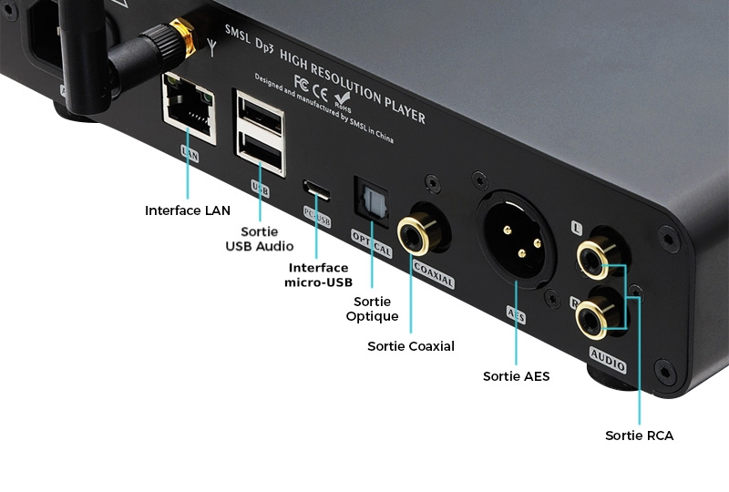 SMSL DP3 Connectique
