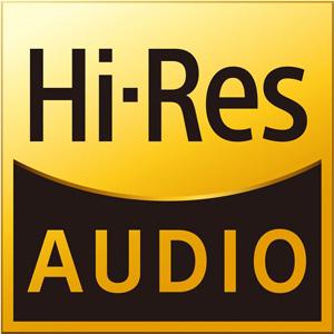 Ecouteurs Intra-Auriculaires IEM Hi Res 16 Ohm