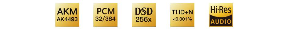 iBasso DC01 Adaptateur DAC Symétrique USB-C Hi-Res AK4493 32bit 384kHz DSD256
